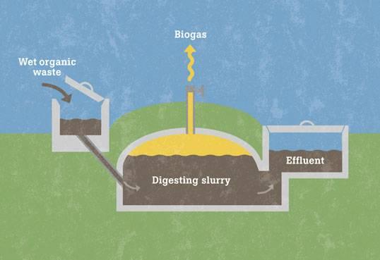 Как сделать биореактор своими руками