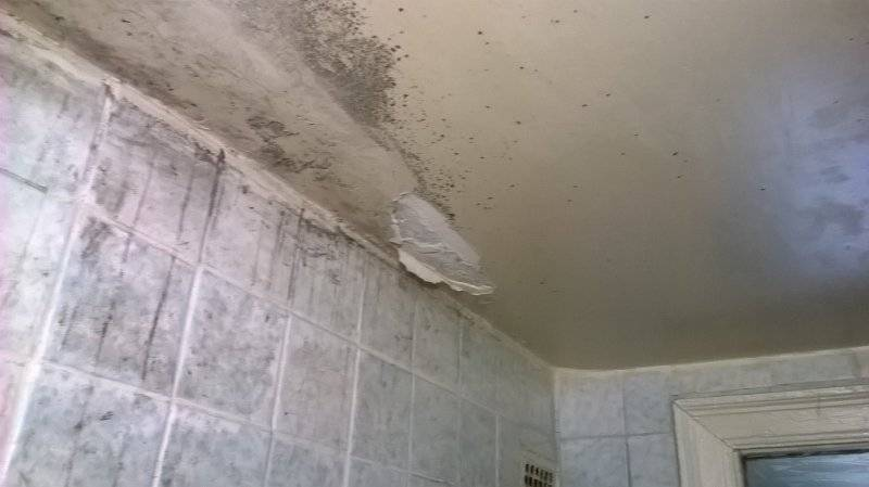 Убираем конденсант на потолке в доме (25 фото)