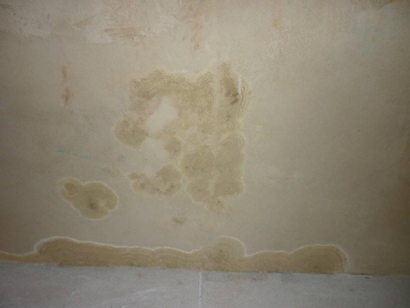 Белый потолок «на раз»: проверенные способы избавления от желтых пятен на потолке