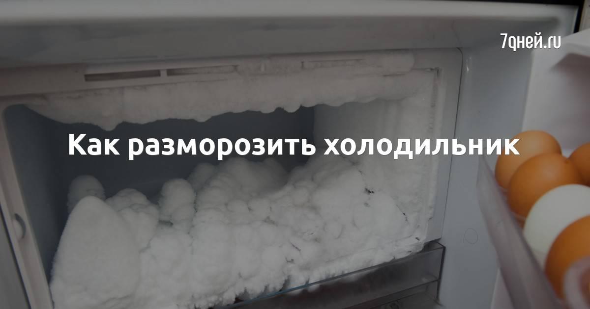 Как быстро разморозить холодильник старой и современной модели