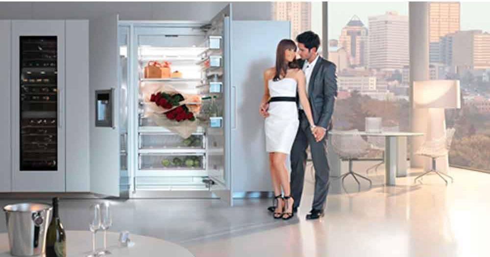 Холодильники «электролюкс» (electrolux): отзывы, советы по выбору + лучшие модели