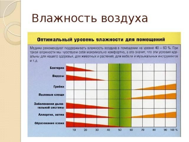 Какая влажность воздуха должна быть в квартире: норма зимой и летом