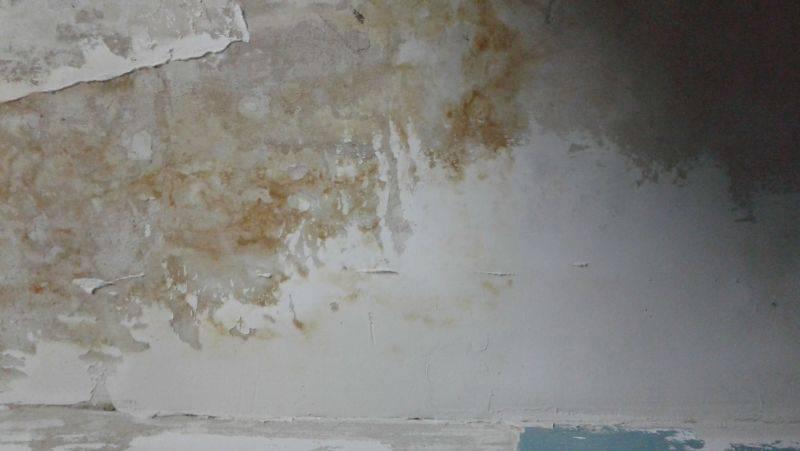 Почему появляются и как убрать желтые пятна на потолке?