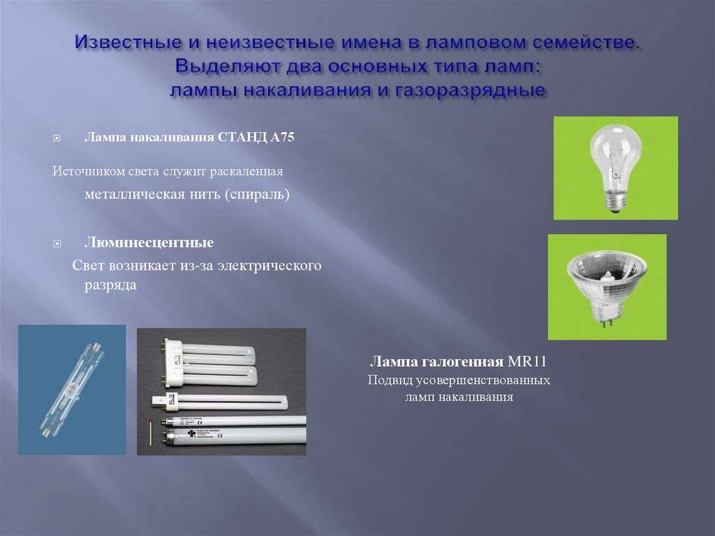Цоколи ламп: типы, виды, маркировка, размеры стандартных лампочек