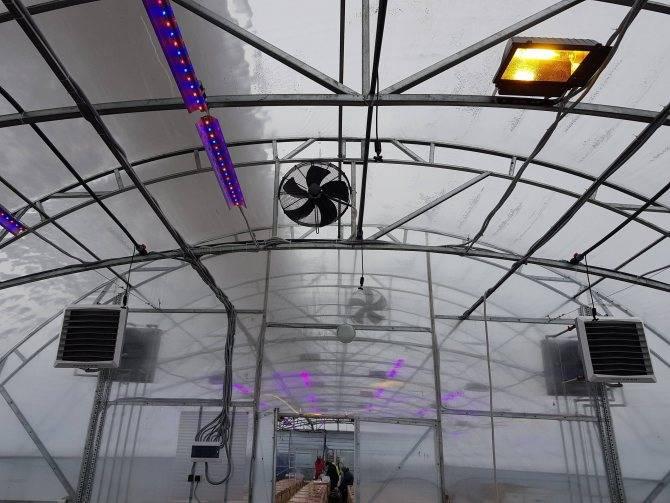 Инфракрасные обогреватели для теплиц: какие лампы c терморегулятором для отопления лучше для теплиц из поликарбоната