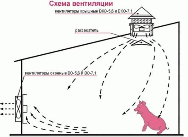 Как сделать вентиляцию в сарае для животных: требования и нюансы обустройства вентиляции