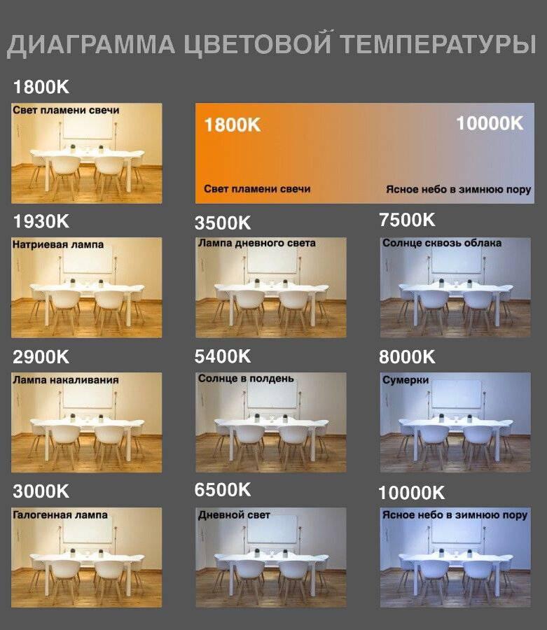 Что такое цветовая температура света и нюансы выбора ламп освещения под свои потребности