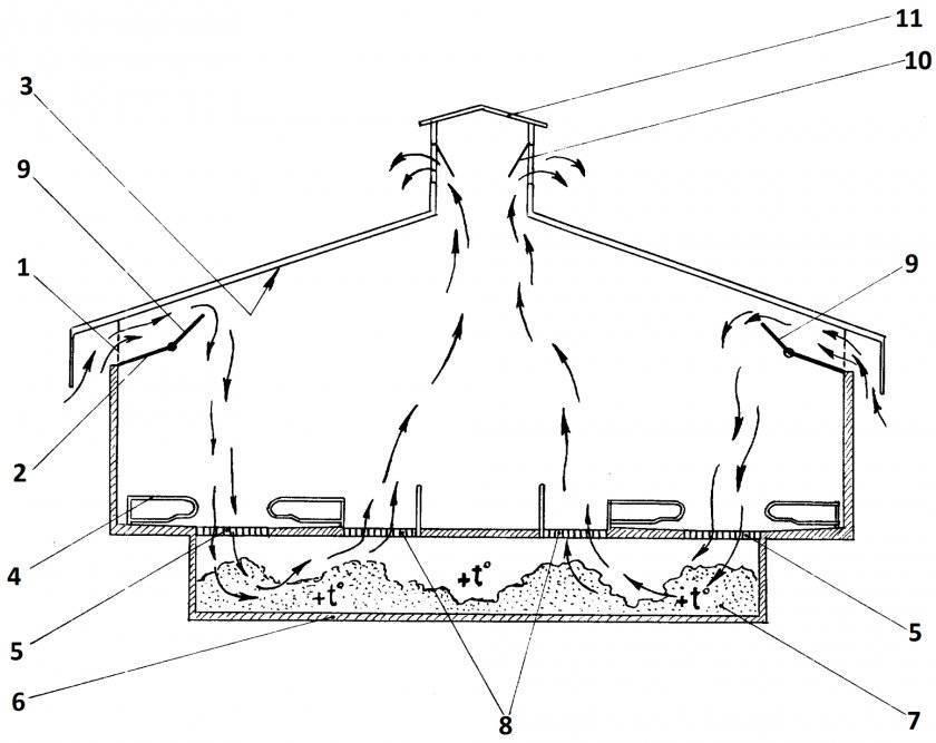 Вентиляция в свинарнике: как выполнить своими руками, схема