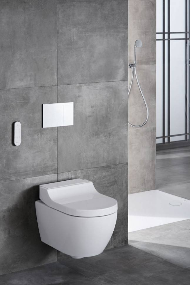 Что повесить на стену над унитазом – картины для туалета, полки, зеркала, полотенцесушитель и другие идеи!   houzz россия