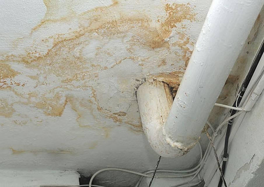 Выводим пятно от протечки на потолке: 5 основных способов
