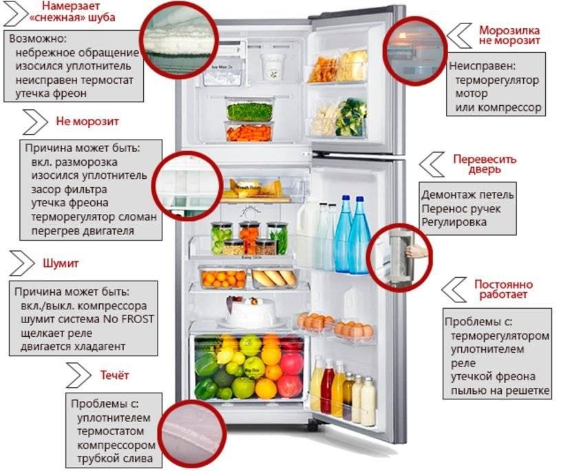 Ремонт холодильников своими руками: диагностика поломок, no frost