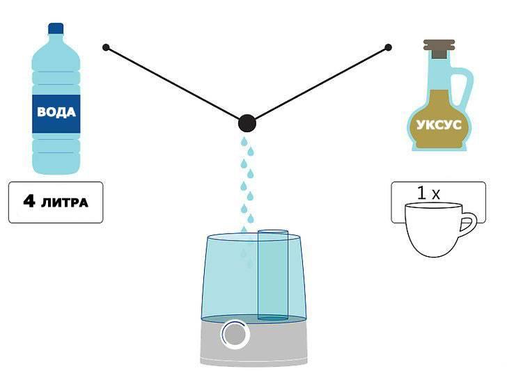 Чистка увлажнителя воздуха: народные способы и бытовая химия, методы дезинфекции