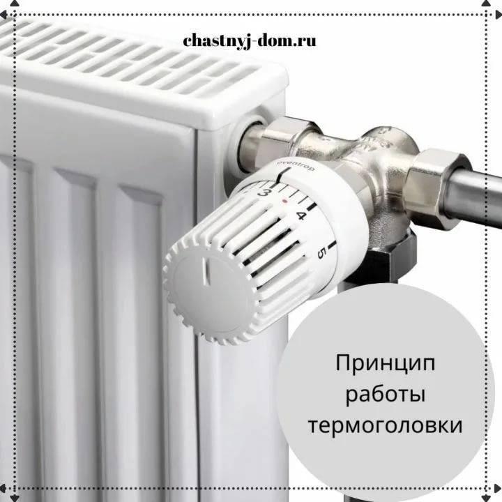 Как выбрать лучший терморегулятор для радиаторов отопления: виды, критерии подбора, обзор популярных моделей, их плюсы и минусы, установка и настройка