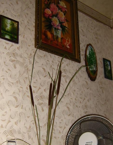 Какие растения нельзя держать дома: приметы, поверья, энергетика