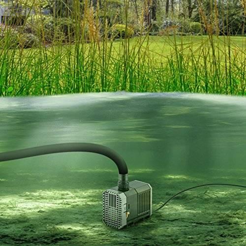 Выбираем насосы для полива огорода из пруда, бочки, водоема