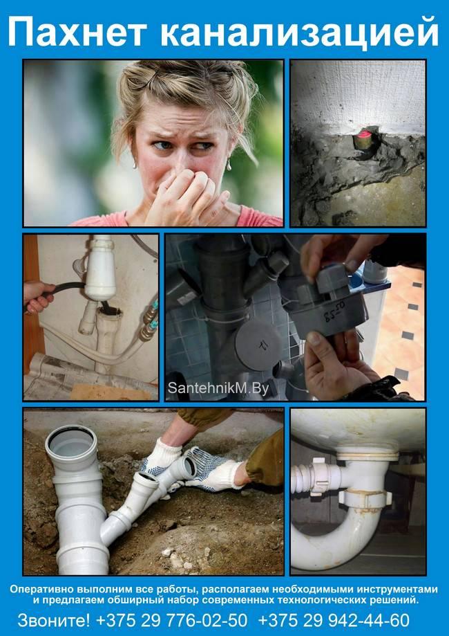 Причины появления запаха канализации в квартире: инструкция что делать чтобы избавиться от запаха