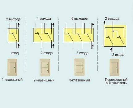 Что такое умная розетка: виды устройства, особенности работы и способы управления