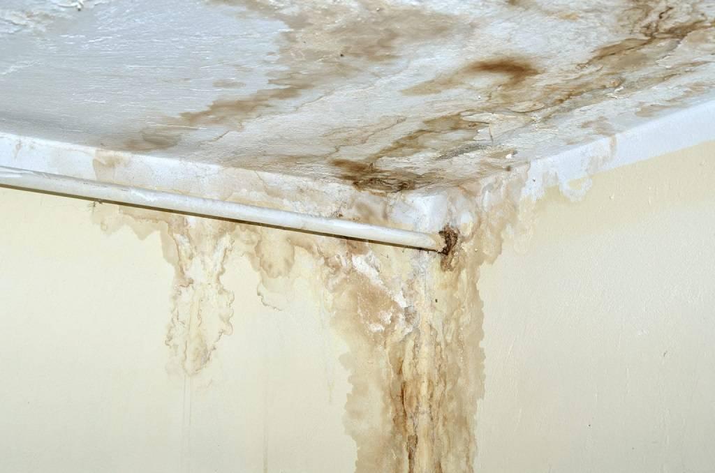 Желтые пятна на потолке. основные причины появления и способы устранения