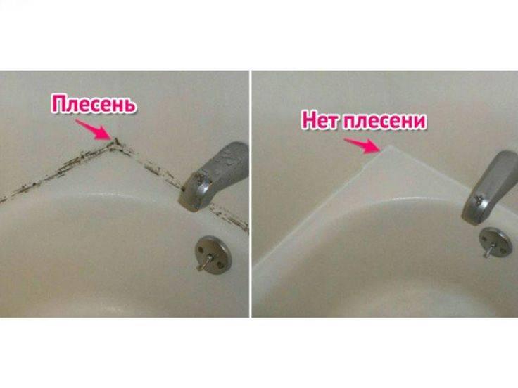 Как избавиться от грибка и плесени в ванной в домашних условиях