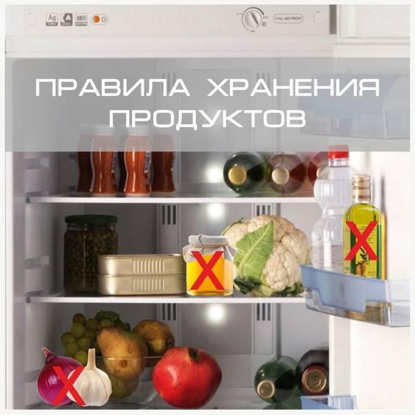 Эти продукты категорически нельзя хранить в холодильнике