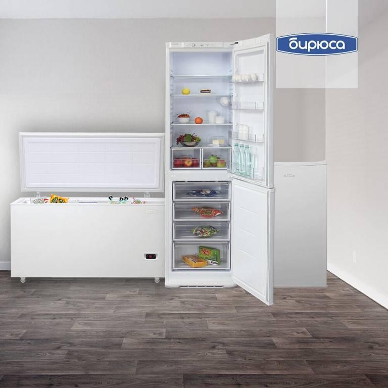 Мини-холодильник рейтинг какой лучше выбрать  обзор лучших производителей