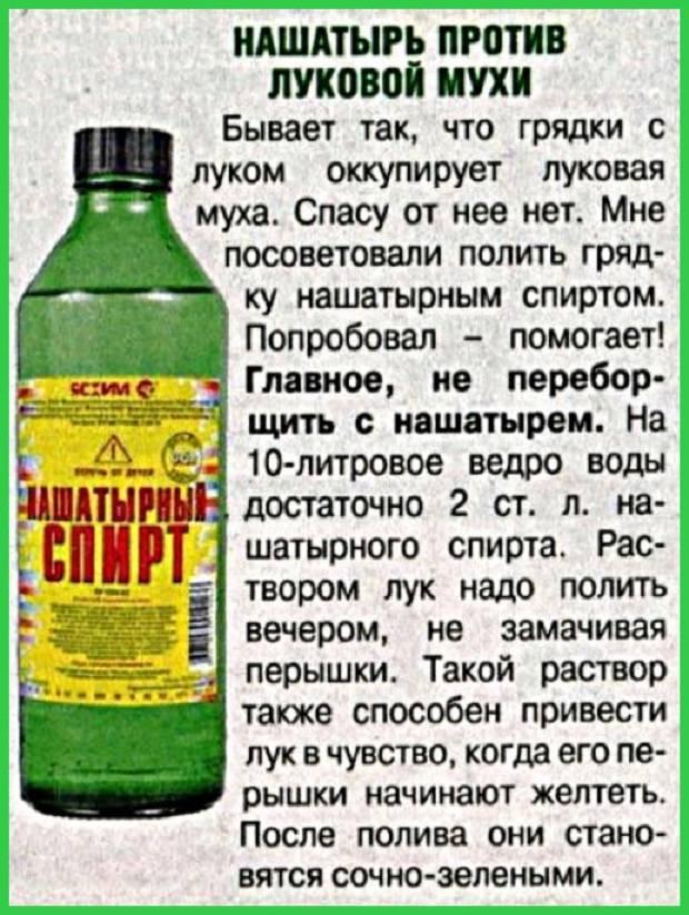 Применение нашатырного спирта при обработке растений