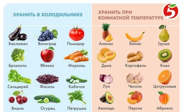 Что нельзя хранить в холодильнике, список продуктов, лекарств и предметов