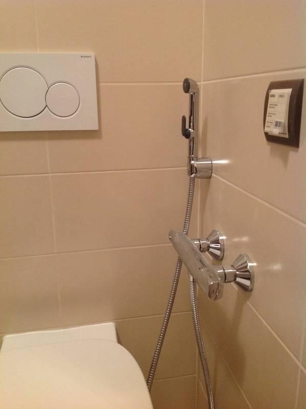 Гигиенический душ со смесителем: рейтинг лучших + советы по монтажу