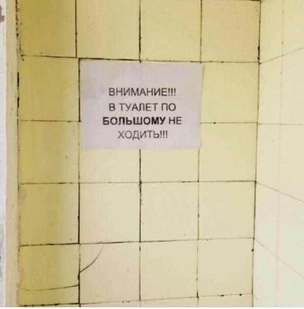 Вредно ли читать в туалете — блог медицинского центра он клиник