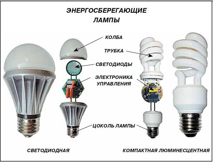 Что умеют умные лампочки? – умный дом