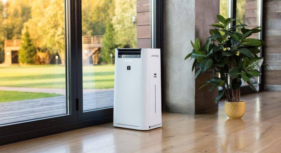 Рейтинг лучших увлажнителей воздуха для квартиры на 2021 год