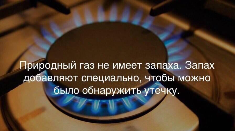 Почему от газового котла пахнет газом и что делать в этом случае