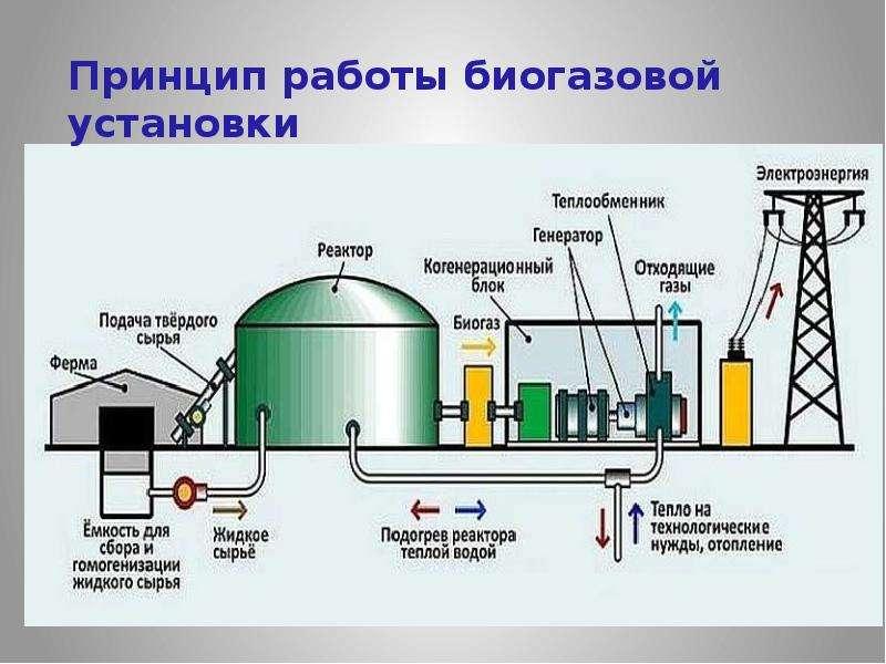 Биогаз из навоза: насколько выгодно и как сделать