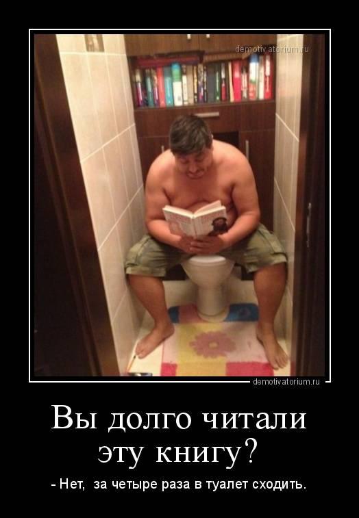 Почему нельзя читать в туалете — разбираемся по пунктам