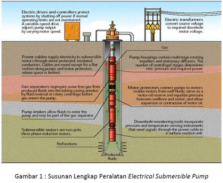 Ремонт скважин на воду: диагностика, этапы проведения работ | гидро гуру