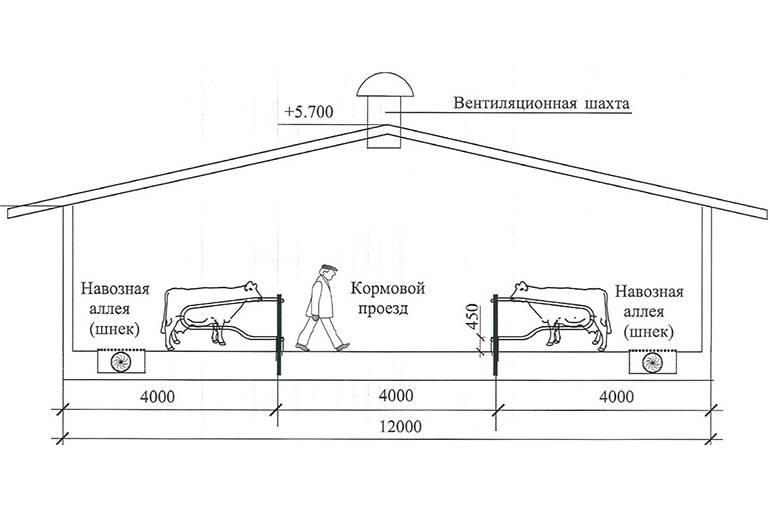 Как сделать вентиляцию в сарае для животных: нормы и требования + инструкции по обустройству