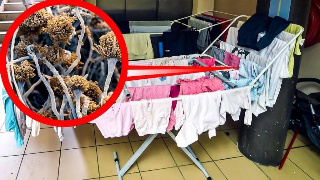 Где сушить белье в квартире без балкона: расскажем об идеальных местах