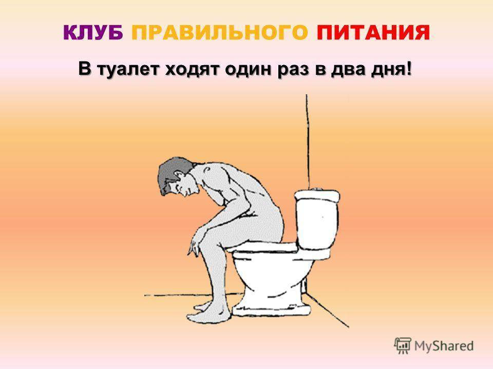 Как сходить в туалет в лесу - wikihow