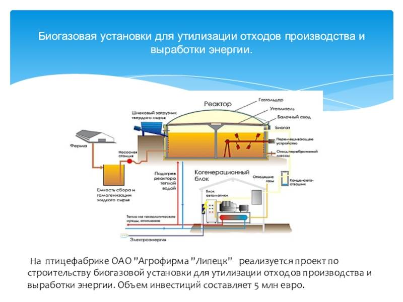 Биогаз своими руками: установки для фермерских хозяйств в домашних условиях