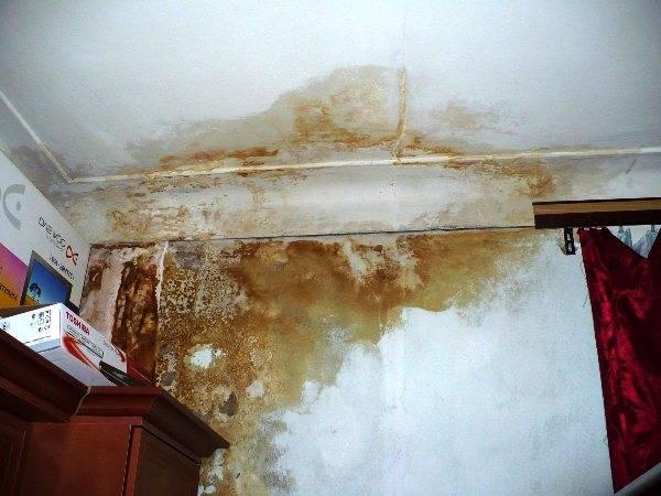 Как забелить желтые пятна на потолке. как убрать пятна на потолке после затопления – варианты ремонта для разных видов потолков. правила ухода за пенопластовой потолочной плиткой
