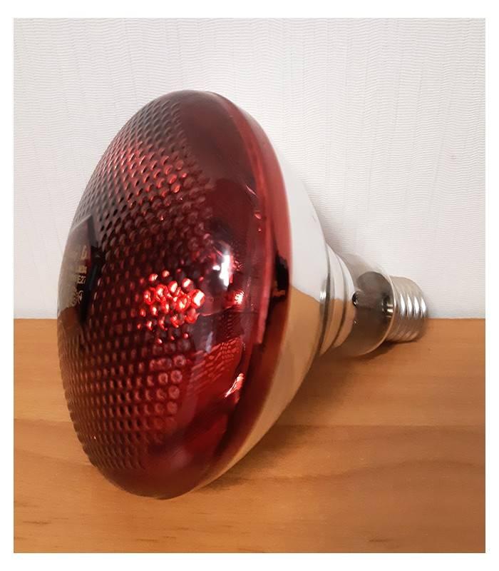 Обогрев курятника зимой инфракрасными (ик) лампами: как выбрать и разместить?