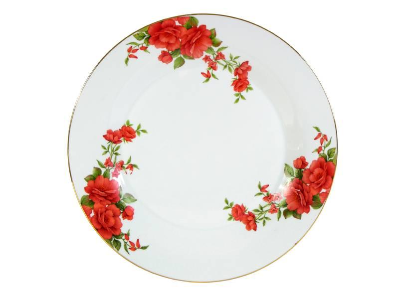 Как выбрать тарелку, советы по выбору и отзывы