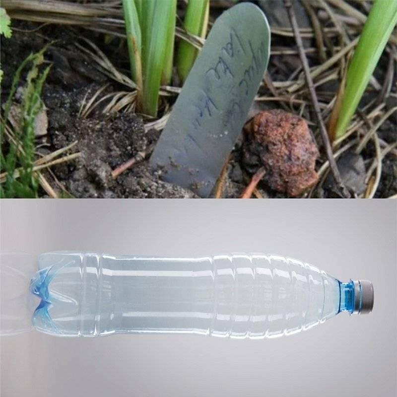 ♻ переработка пластиковых пэт бутылок ▶ как бизнес на дому ▶ отзывы ▶ утилизация в домашних условиях