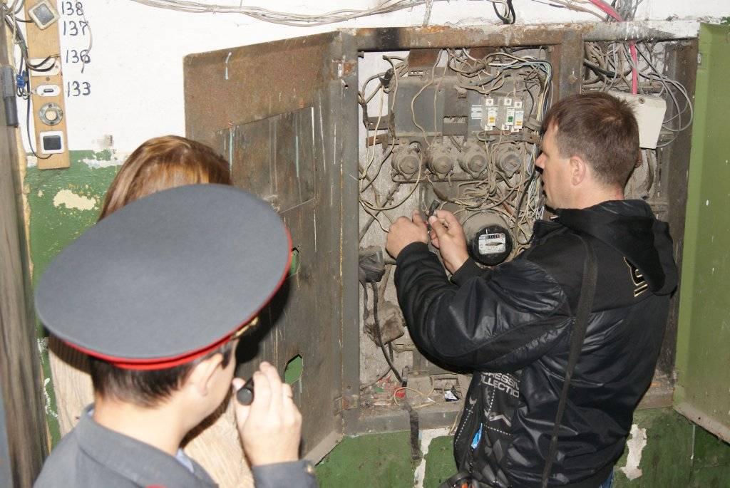 В «россетях» объяснили вырубку тридцатилетних елей в ставрополе безопасностью лэп