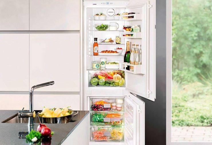 Лучшие холодильники hotpoint-ariston топ-10 2021 года
