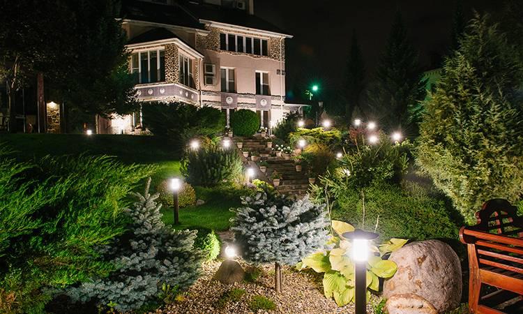 Виды декоративной подсветки деревьев и кустарников