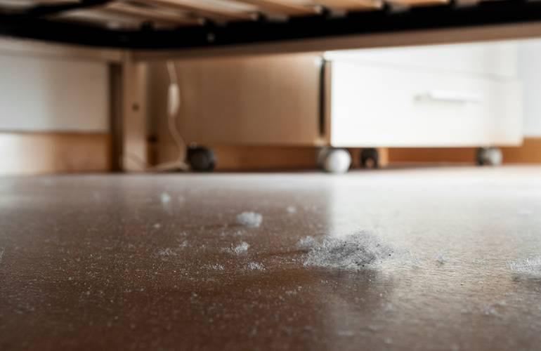 Как очистить воздух в доме: 10 действенных способов