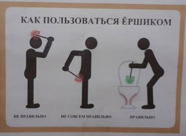 Может ли туалет всамолёте засосать человека? подборка интересных фактов