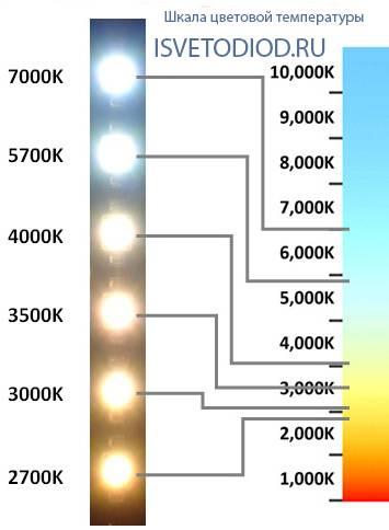 Освещение для растений: по каким параметрам выбрать лампу