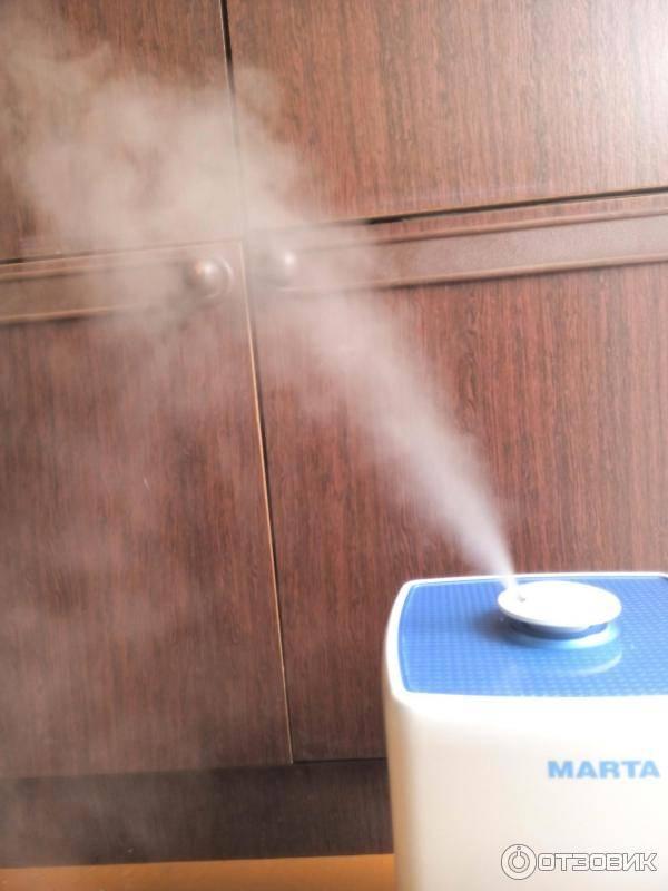 Какую воду рекомендуется заливать в увлажнитель воздуха